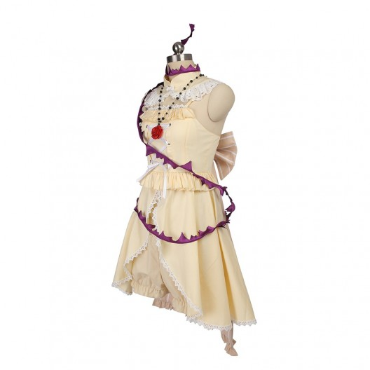 Sleeping Beauty Dress Costume