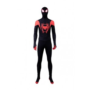 Spider-Man Peter Parker Cosplay Costume